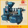 Combimned avancé Oil Press avec Precision Filter (YZLXQ130-8)