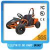 De uitstekende kwaliteit met de Elektrische Elektrische Jonge geitjes van de Rode Kleur gaat Kart/Tbg02