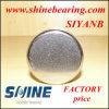 Siyanb Bk 5020 tirées de Béring à aiguilles (BK 5020)