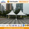 중국 (P6)에 있는 Sale를 위한 6*6m Night Party Tent Marquee Tent