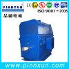 Esquilo Cage Compact Motors Elevado-Voltage 1500kw