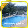 SGS ISO 세륨에 의하여 승인된 단단하게 한 유리제 강화 유리 담은 유리제 방책 또는 수영장 담을 깐다