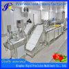 Grande equipamento de processamento comercial da fruta e verdura