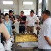 Le caramel continu automatisé assaisonne la chaîne de production de maïs éclaté