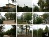 Jardin de boule et chemin et lumière solaires de Road& Strret