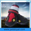 Zapatos del perro de animal doméstico con la planta del pie antirresbaladiza rugosa del Velcro reflexivo