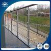 Barandilla de acero inoxidable pasamanos escalera interior / exterior el diseño de baranda de vidrio