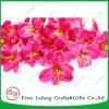 Simulación de Rose Cartland Thai Orchid Seda artificial Flores jefe
