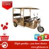 販売のための3つの車輪の電気三輪車の開いた人力車