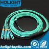 Om3 Sm 12c patch cords MPO Fibra Óptica