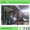 Concret madera contrachapada / Encofrado de madera contrachapada / construcción de madera contrachapada