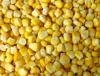 Núcleos de maíz dulce de IQF