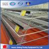 Cage de batterie de couche de poulet pour des fermes dans les fermes avicoles