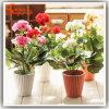 ホーム装飾の人工花のプラスチックBonsaiの絹の花