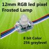 Замороженный свет 0.3W DC5v пиксела СИД