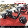 3 motorini di Harley delle rotelle con i doppi Cochi smontabili 1000W della città della batteria