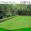 Общий сад и двор выделенной искусственных травяных Vs реальные травы (ДБВР)