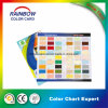 Carte graphique de couleur de peinture murale professionnelle