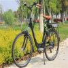 Stadt-elektrisches Fahrrad mit Lithium-Batterie (RSEB-203)