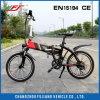 E-vélo Pliable Vert avec 250W Hub Moteur