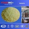 Comerciante blanco industrial del polvo de la gelatina de la piel del cerdo del precio bajo