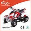 Quad Bicicleta 49cc Mini ATV