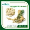 Tongkat 알리 추출 또는 Tongkat 알리 루트 추출 200 1/Tongkat 알리 추출 분말