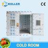 20cbm Wolked-en el sitio del congelador para el almacenaje del hielo