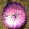 Прямой зонтик (HYU-Z-2011020)