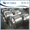 Tous les conducteurs en aluminium/Câble AAC Fabricant/Fournisseur