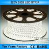 Striscia flessibile fredda 3528 di bianco 220V LED di migliori prezzi