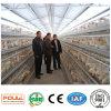 최신 직류 전기를 통한 가금 장비 닭 층 감금소 국제 기준