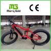 アルミニウム6061フレームのEbike 48V 350Wの高い発電の脂肪質のタイヤの電気バイク