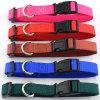 (5 цветов 4 размера) зеленый цвет/голубые/померанцовые/красные/розовые Nylon вороты собаки зажимов высоки рентабельные твердые