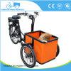 子供のためのより小さいサイズ・ボックスBakfiets Trike