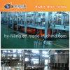 Chaîne de production remplissante de l'eau alkaline de bouteille d'animal familier