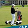 安い20.8ah 60V 1000Wのゴルフボードによって使用される電気ゴルフカート