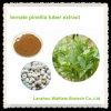 Extracto ternado natural del tubérculo de Pinellia de la alta calidad