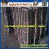 Rete metallica saldata galvanizzata elettrotipia dell'acciaio inossidabile