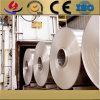 Bobina de la aleación de aluminio de la alta calidad de la fabricación 6063 de China