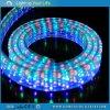 LEIDEN Licht 4 Draden Vlakke Muticolor van de Kabel is het Gecontroleerde Licht van de Tuin