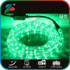 LED IP65 밧줄 밝은 초록색 빛 110V 실내와 옥외 사용 11mm