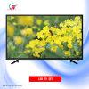 43 set televisivo completo di pollice HD LED (ZYY-430NORM-F)