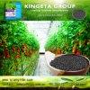Il fertilizzante microbico composto basato carbonio di Kingeta migliora la microflora del terreno