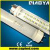 T8 형광성 LED 관 (세륨, RoHS)