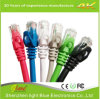 Cabo da rede do LAN de Colorfull Cat7