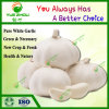 10 кг 20 кг Mesh Bag новой упаковки чеснок со свежим нормальный чистый белый чеснок из Китая