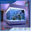 Taglio di strato libero del perspex al formato per gli acquari