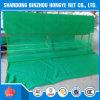 緑のプラスチックHDPEの足場安全策