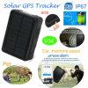 Imperméable IP67vache/chèvre solaire Tracker GPS avec 9000mAh Batterie V34